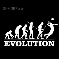 t-shirt Ewolucja Siatkówka