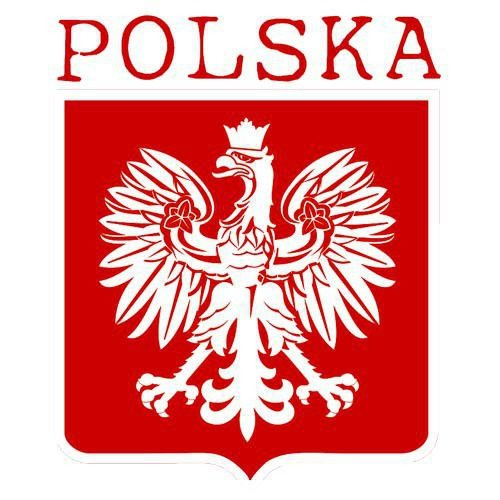 T-shirt v-Neck Polska + Własne nazwisko i numer