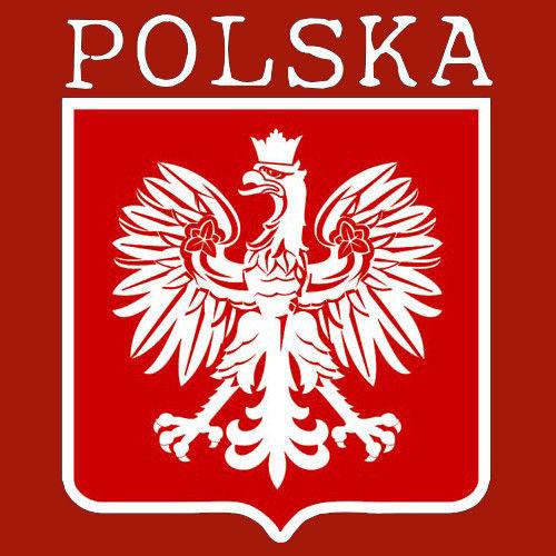 t-shirt 2K021 Polska mały herb Orzeł Czerwony
