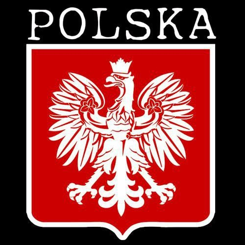 t-shirt T023 Polska male Godło Czarne